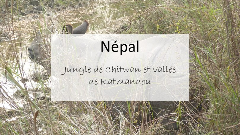 lieux de rencontre à Katmandou Top 10 des meilleures applications de rencontres mobiles