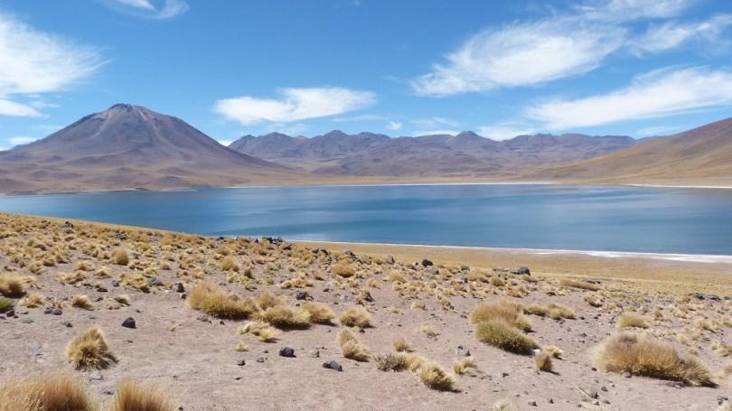 Laguna Miscanti Volcan