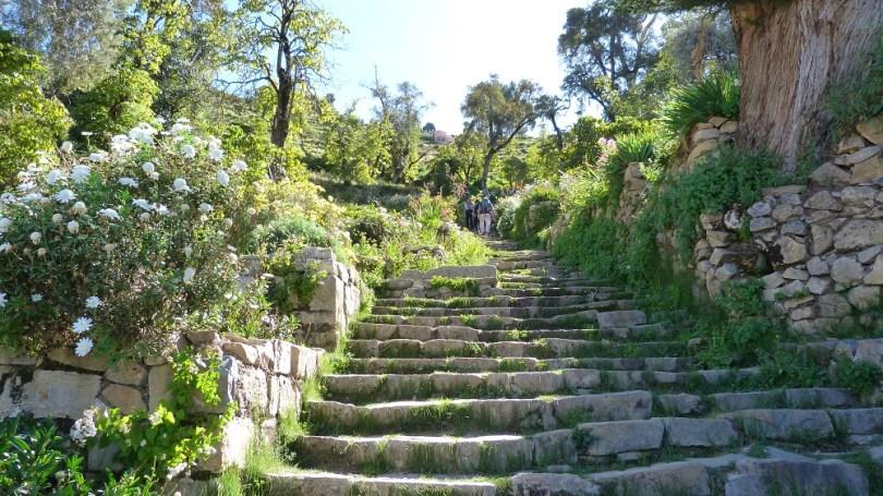escalier inca isla del sol