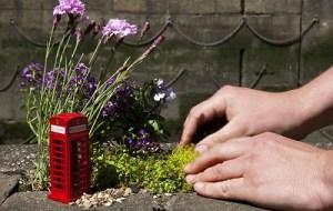 Pequenos Jardins - Londres - Inglaterra