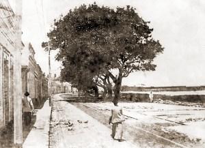 Av. da Paz no início do século XX. Ainda era conhecida como o Aterro de Jaraguá