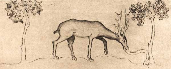 veado-bestiario