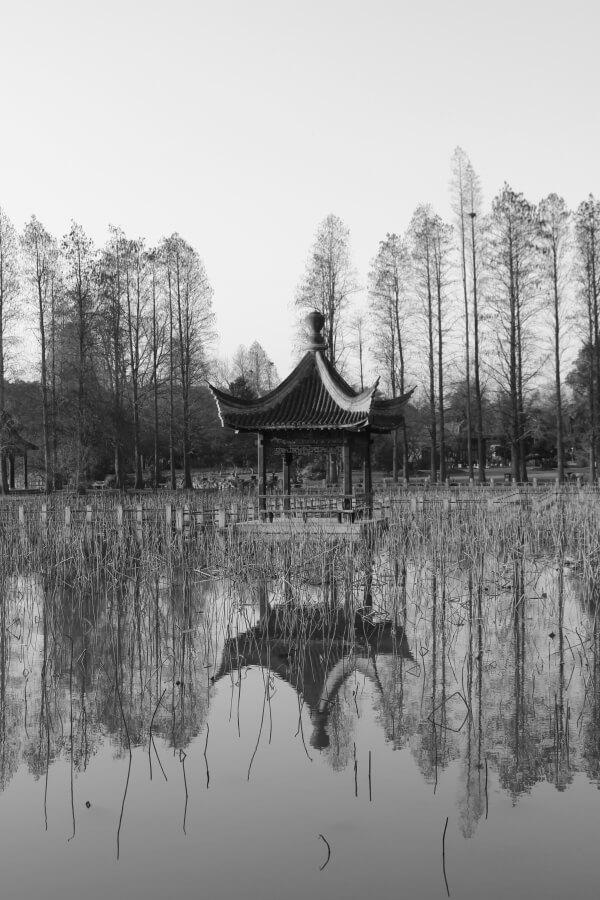 parque-wuhan-1