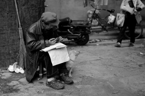 anciano-perro-chengdu-2
