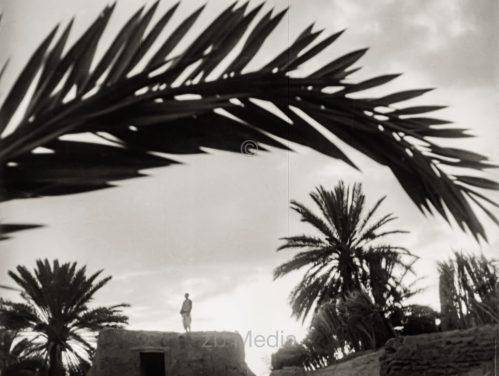 Tel Aviv 1937