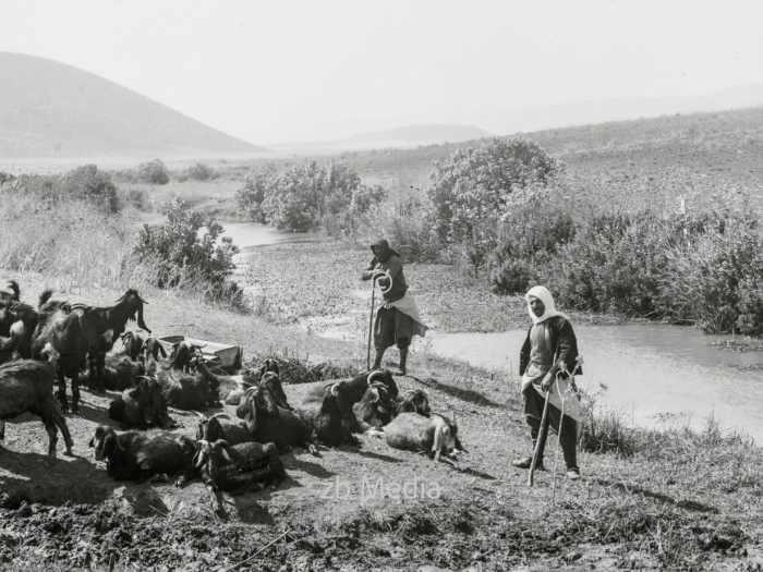 Arabische Ziegenhirten in Palästina 1935