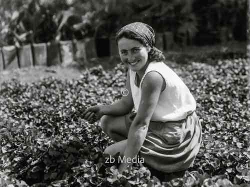Landwirtschaftliche Ausbildungsschule für Mädchen in Palästina 1935