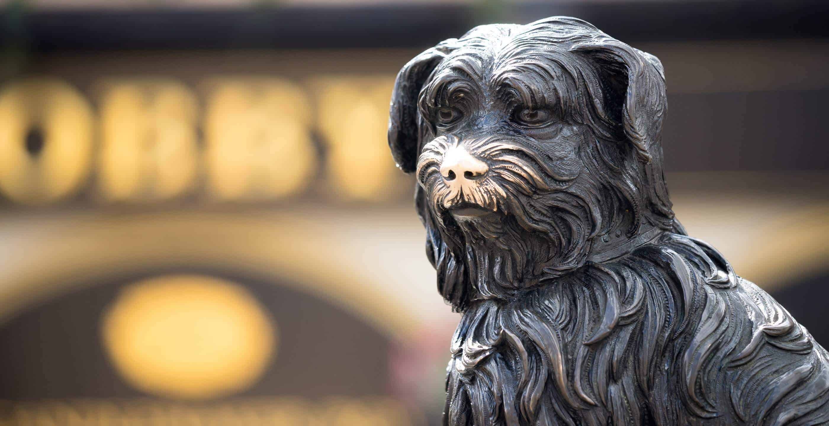 The Story of Greyfriars Bobby