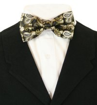 Chic Bow Tie - Black/Gold Paisley