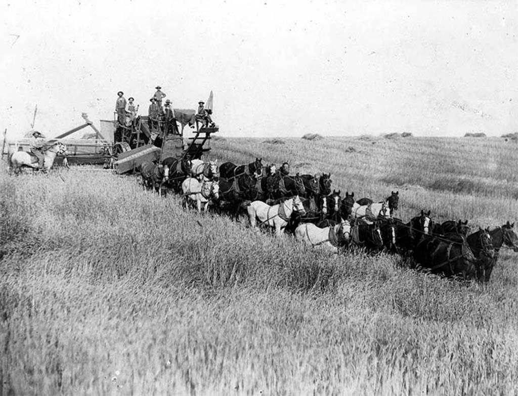 Farm Land Eastern Washington