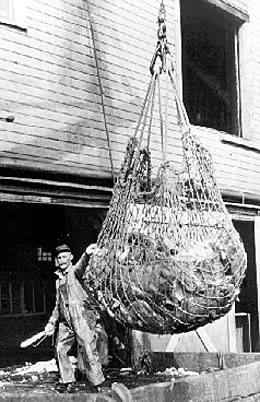 Canada and the United States sign the Pacific Halibut Convention on March 2 1923  HistoryLinkorg