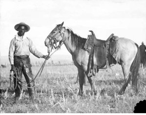 Who were the real cowboys? (Part 3)