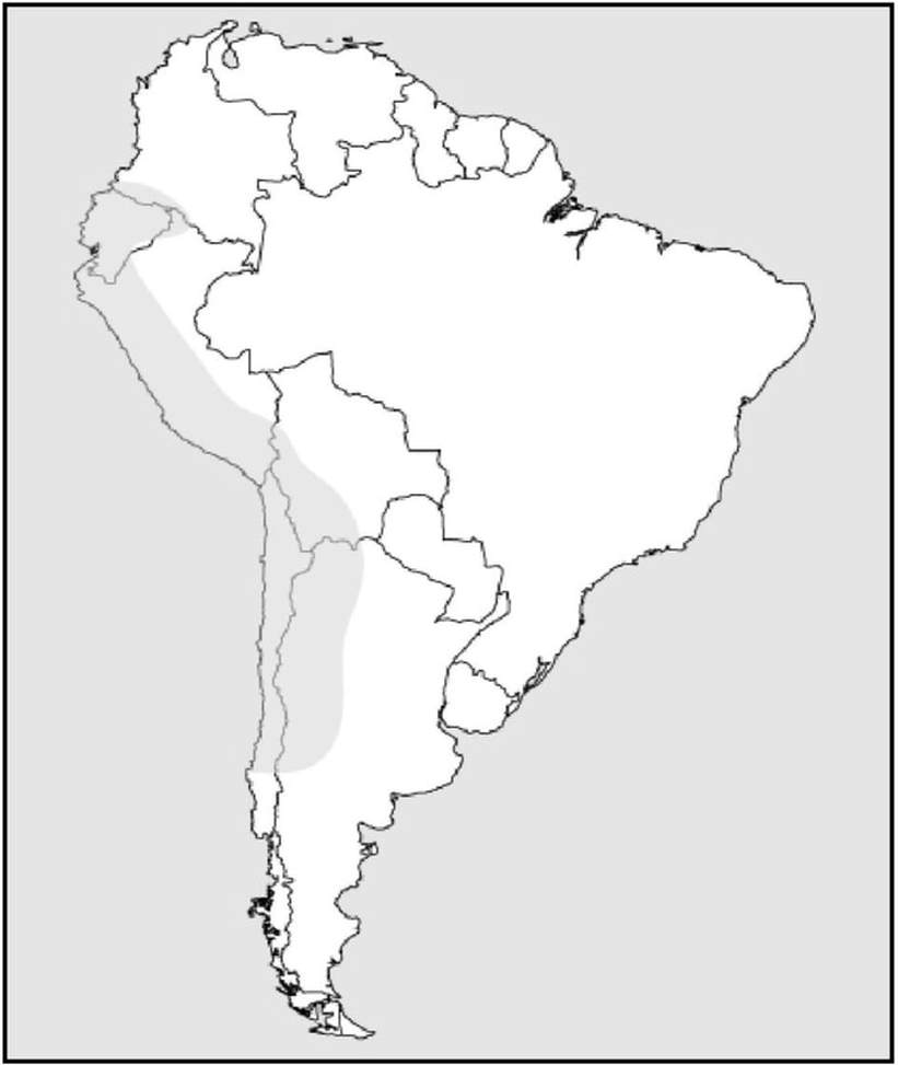hight resolution of Inca Geography Activity - HISTORY'S HISTORIESYou are history. We are the  future.
