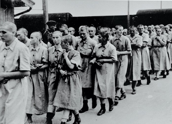 Image result for holocaust
