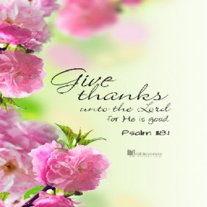 Thankfull ~ CHRISTian poetry by deborah ann ~