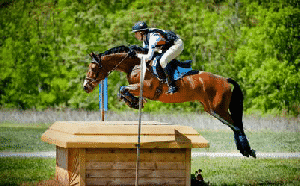 הוראות התקנת כבל לרוכבי סוסים