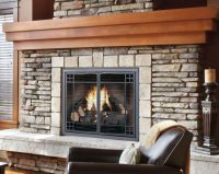 Fireplace Mesh Doors, Screens, & Curtains