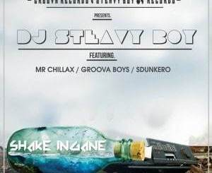 DJ Steavy Boy ft Mr. Chillax, Groova Boys & Sdunkero – Shake Ingane
