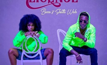 Becca ft. Shatta Wale - Driving License