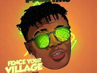 PaBrymo – Fence Your Village