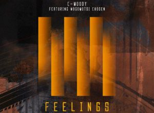 C-Moody, Mogomotsi Chosen – Feelings (Hypaphonik Derived Vocal)