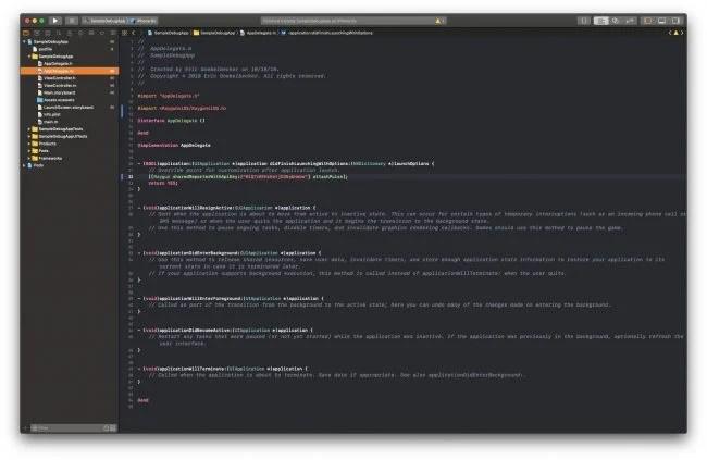 xcode iOS debug