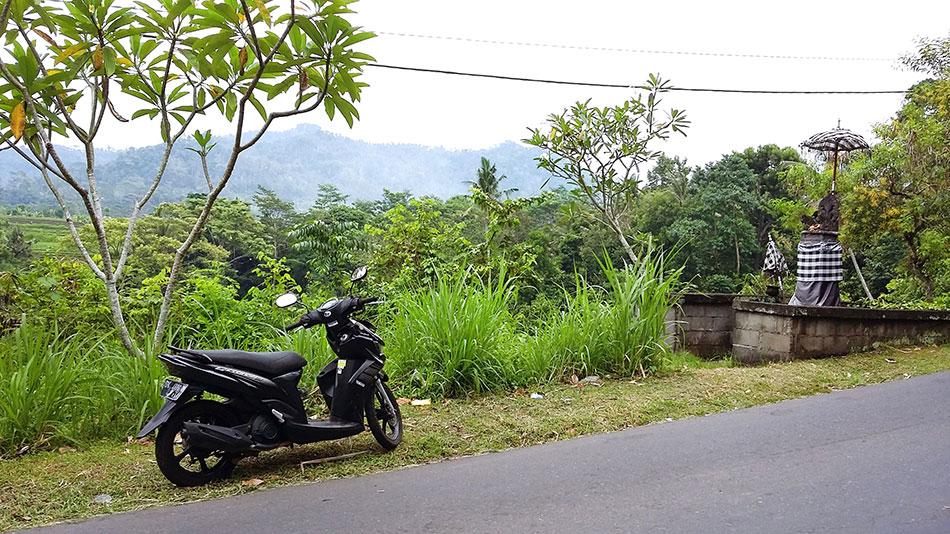 Conduire un scooter à Bali permet de mieux profiter du paysage.