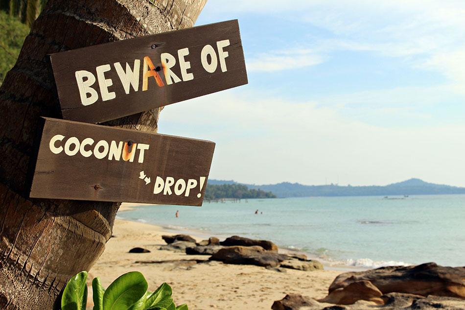 Attention aux noix de cocos qui tombent à Koh Kood.