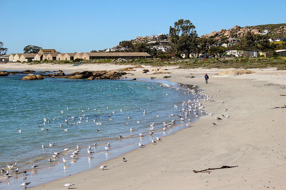 St Helena Bay sur la côte ouest sud-africaine