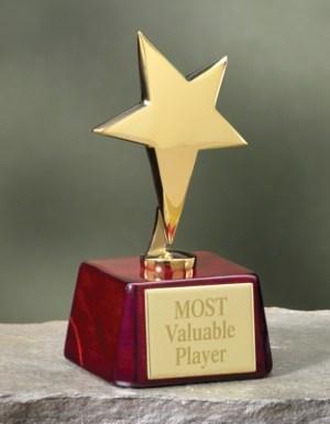 Gold Star Rosewood Award-0