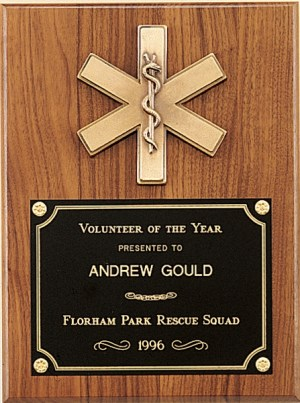 Star of Life Plaque P2930