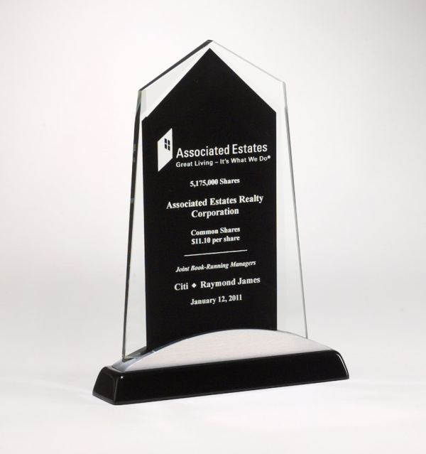 Black & Silver Glass Award