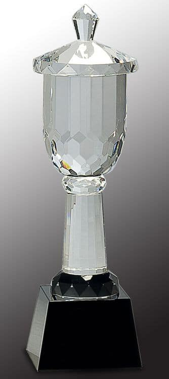 CRY006 Crystal Trophy Cup-blank