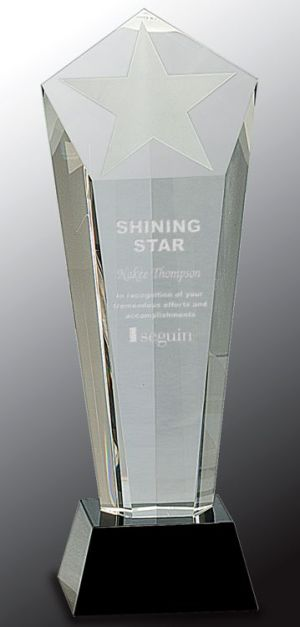 CRY031M Frosted Star Crystal Trophy