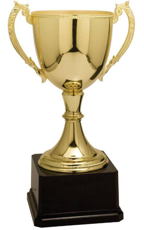 CZC605G Trophy Cup