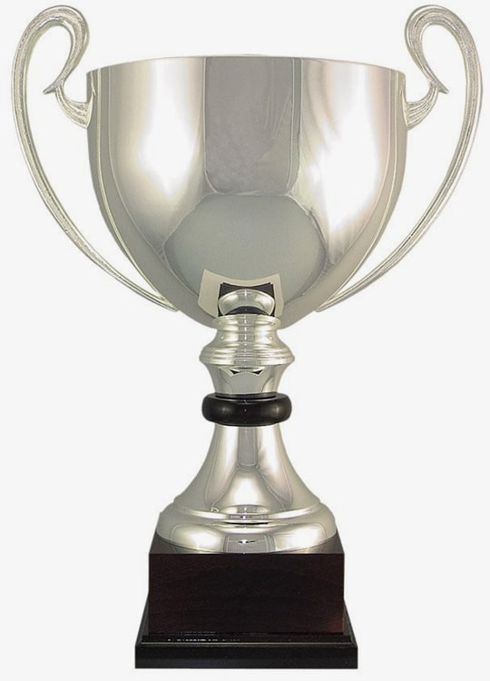 100-2 Silver Trophy Cup
