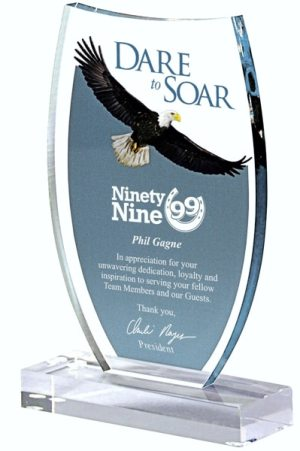 DT821 Dare to Soar Acrylic Award