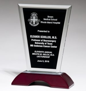 Black Glass Award G2906 G2907 G2908, Glass piece with black area for engraving mounted on a silver metal & rosewood base