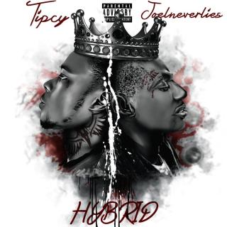Tipcy X Joelneverlies Hybrid Album