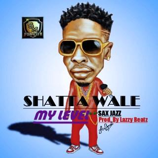 Shatta Wale level