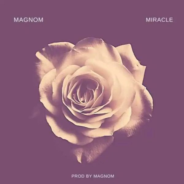 Magnom Miracle