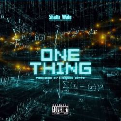 Shatta Wale One Thing