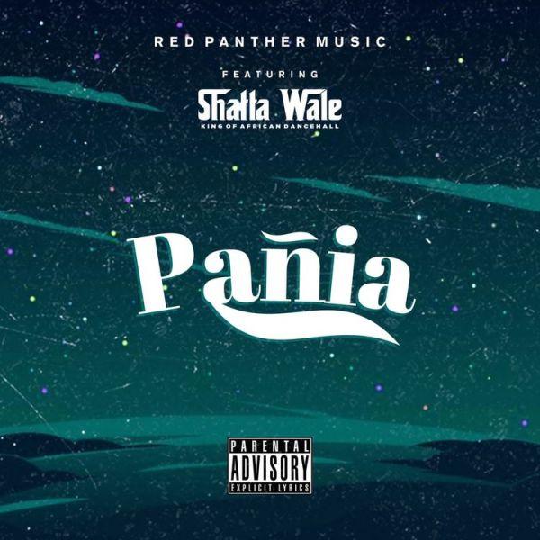 Shatta Wale Pania