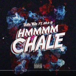 Shatta Wale Hmmm Chale