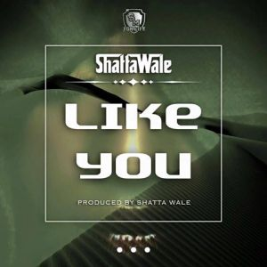 Shatta Wale - Like You (Prod By Shatta Wale)