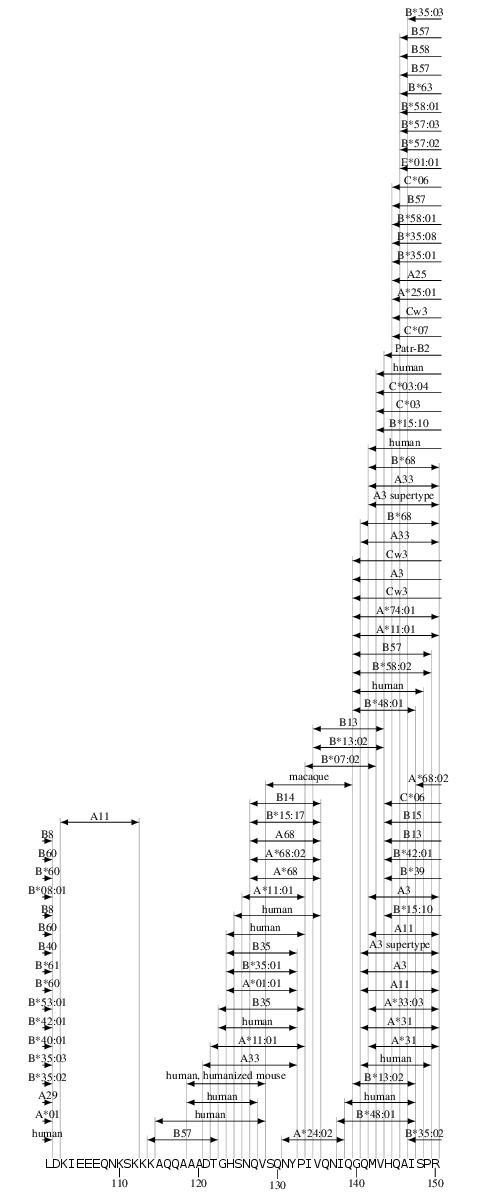 Gag CTL/CD8+ Epitope Map