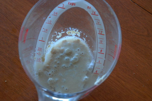 yeast in measuring cup