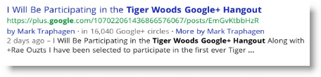 Tiger Woods Google Plus Hangout
