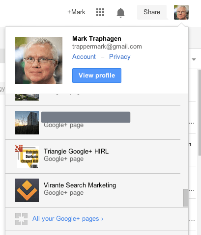 Select a Google Plus page profile