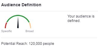 Facebook Audience Definition